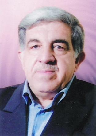 عامر الدلوي