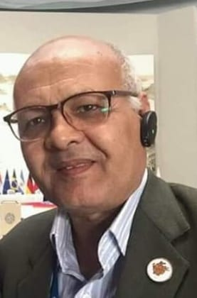 حمدى عبد العزيز