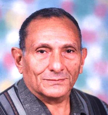 Ahmed Desouky Morsy ...