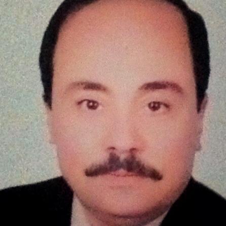 Mohamed Ibrahim Bassyouni